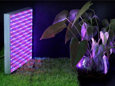 Производство светодиодных фитосветильников для растений