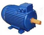 Электродвигатель А180МК2 У3 22х3000 1001