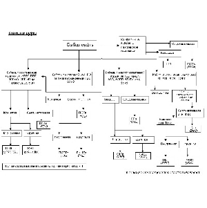 Как выбрать кабельную муфту